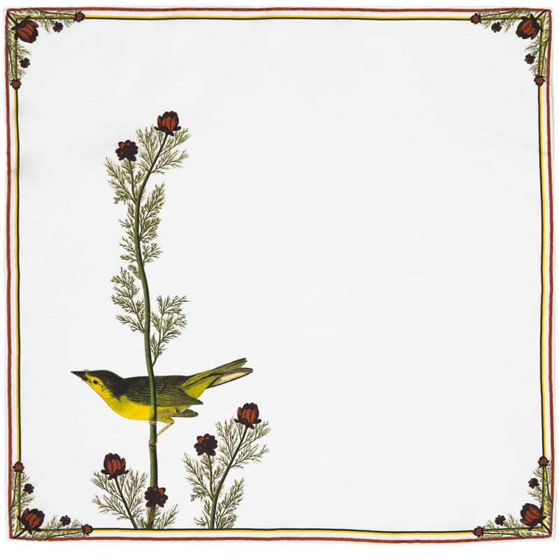 Selby's-Flycatcher-Bird-Audubon-Product-Shot